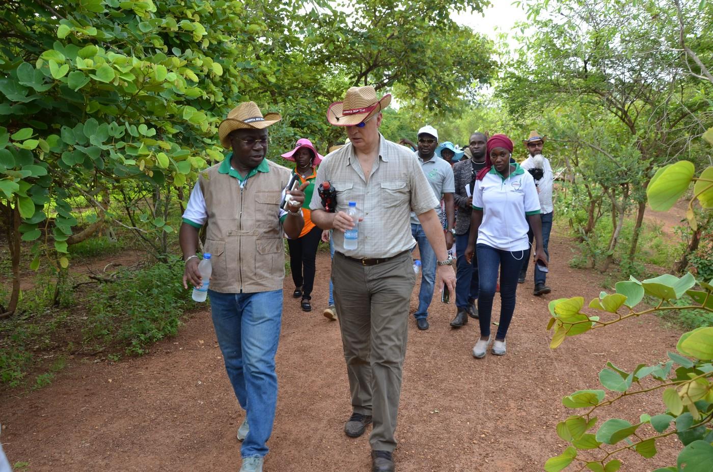 """Atelier international Agrinovia """"Impact de la formation professionnelle universitaire sur le développement rural en Afrique de l'Ouest"""" Korhogo, Mai 2019"""